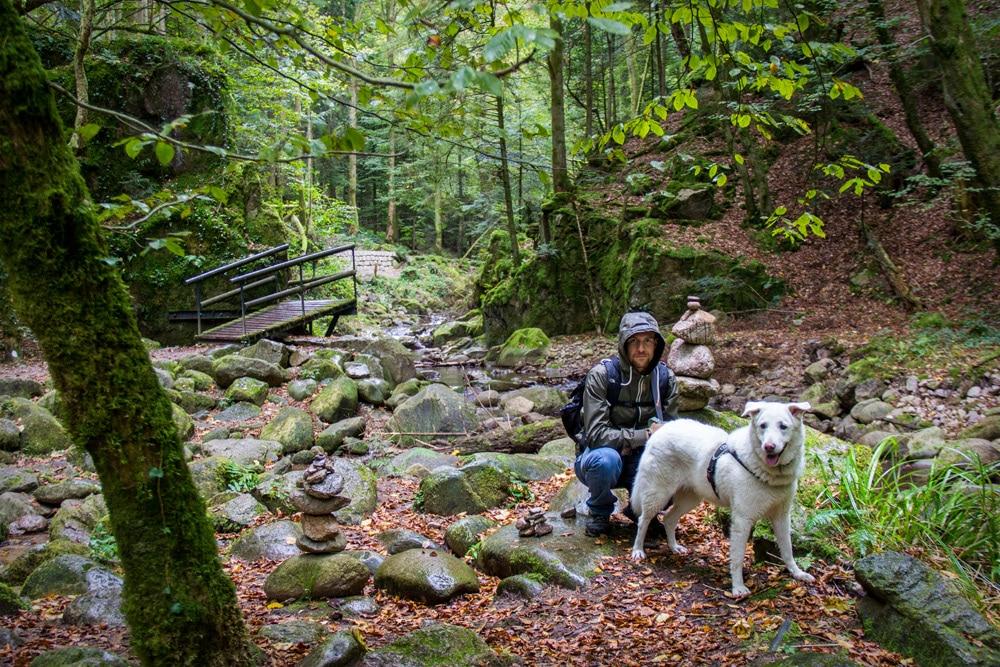 Schwarzwald, la foresta nera